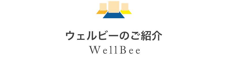 株式会社ウェルビーのサービス